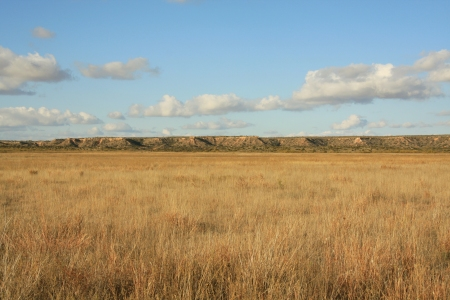 Llano_Estacado_Caprock_Escarpment_south_of_Ralls_TX_2009
